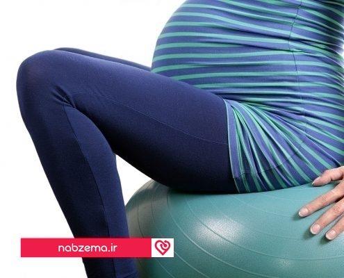 طول بارداری