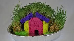 تزیین سبزه به صورت کلبه