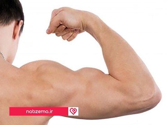 رشد عضلات بازو