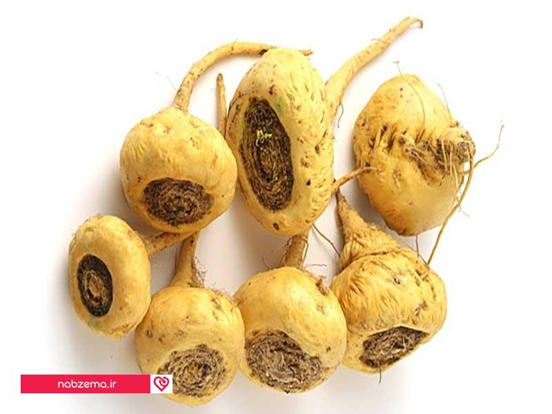 ریشه ماکا - گیاه اسپرم ساز