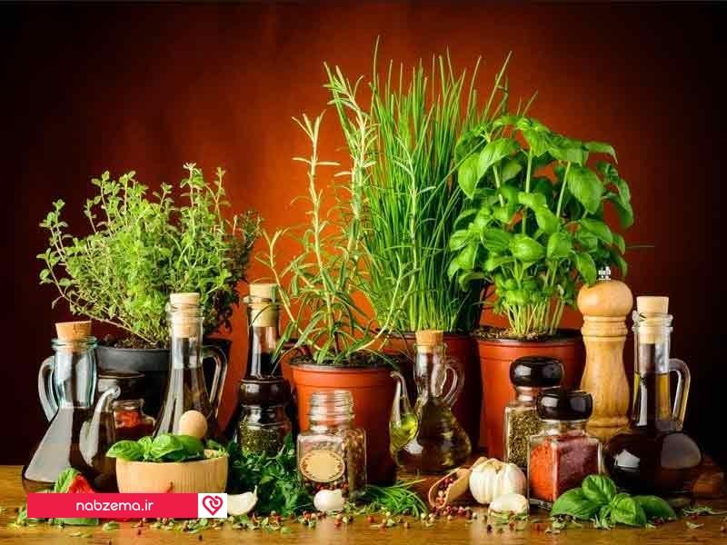 گیاه ضد استرس