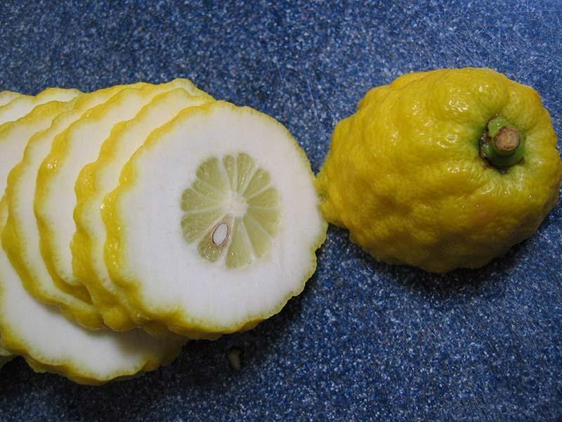 میوه بالنگ