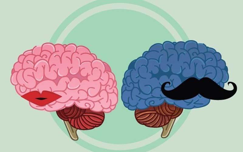 رابطه جنسی بر روی مغز