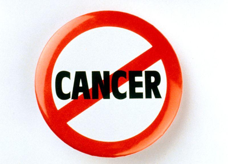 خواص بوقلمون؛ پیشگیری از سرطان