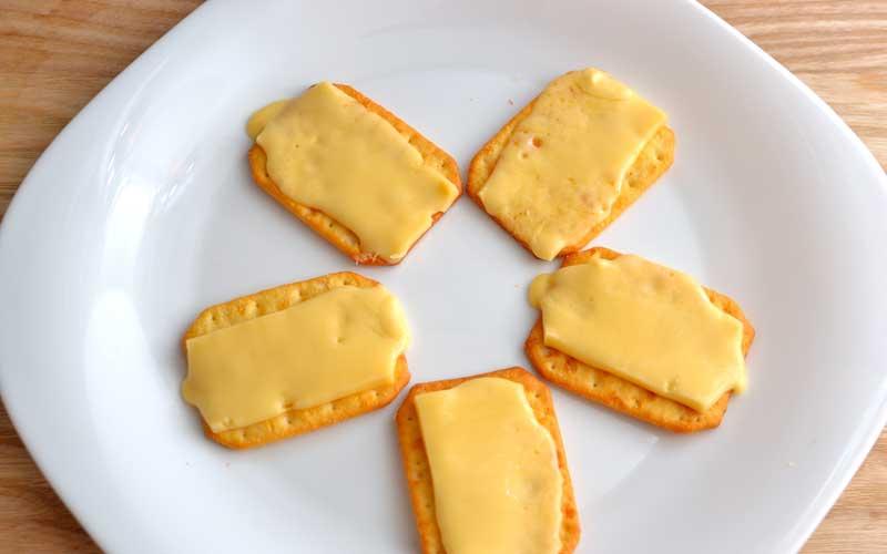 کراکر پنیری