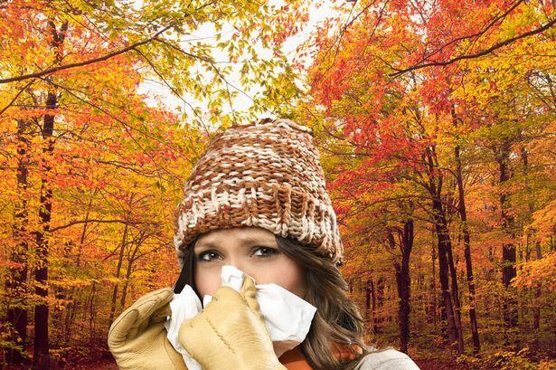 سرماخوردگی در پاییز