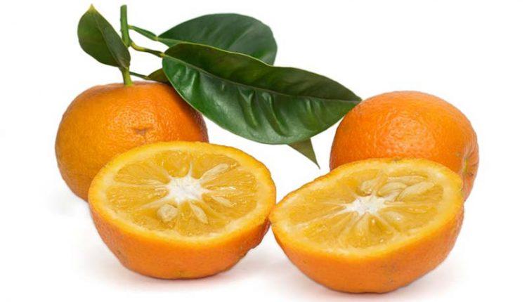 خواص نارنج