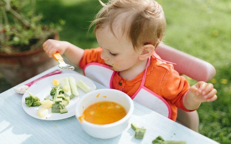 غذا دادن به کودک تب دار