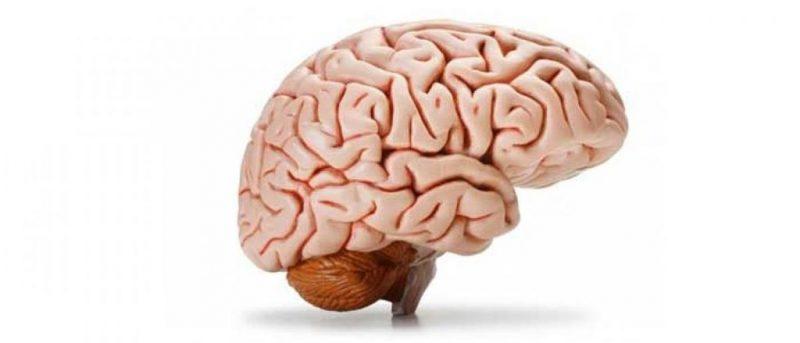 آلزایمر چیست
