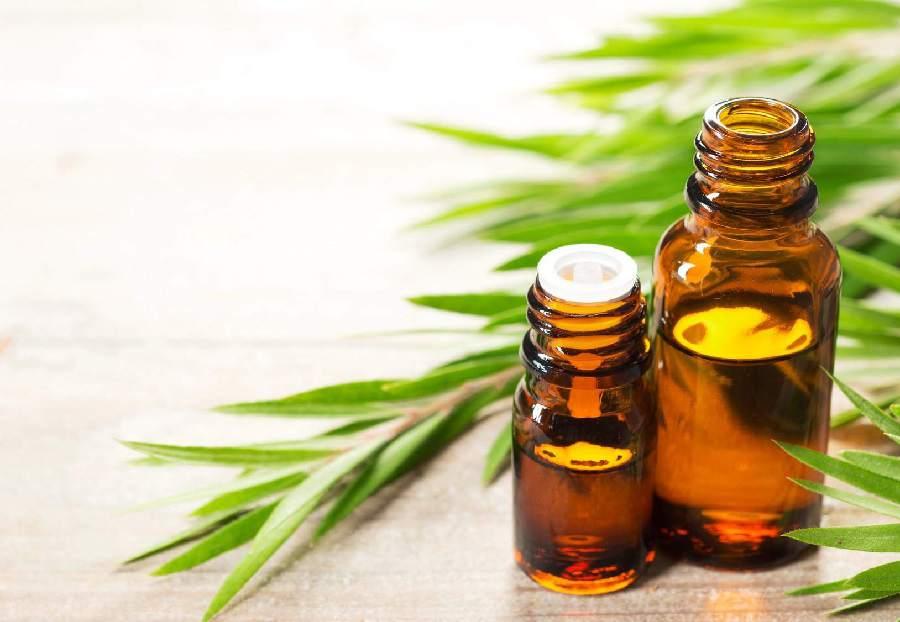درمان جوش کیستی با روغن درخت چای